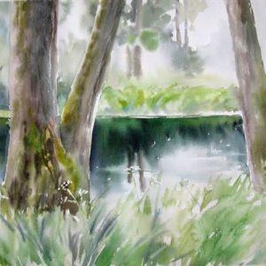 Metsavaikus, akvarell, 56×38 cm