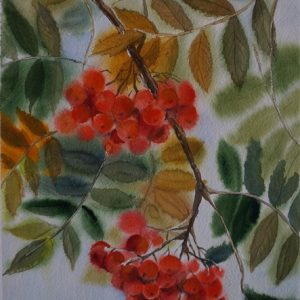 Sügise vitamiinid, akvarell, 28×38 cm